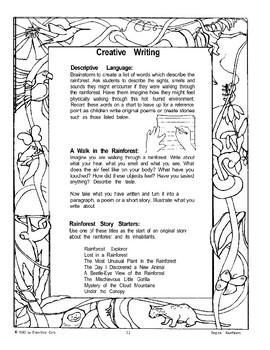 Rainforests: Creative Writing Ideas
