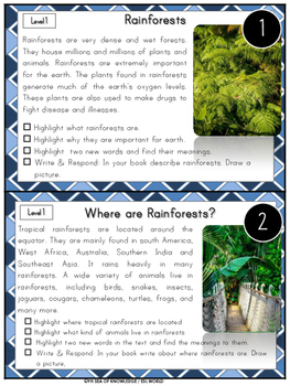 The Rainforest Reading Comprehension