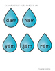 Raining Short -a Picture & Word Sort 1