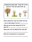 Raking Leaves Fall Following Directions Comprehension Emergent Reader Literacy