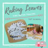 Raking Leaves- Fine Motor Tracing