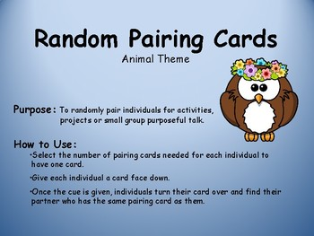 Random Pairing Cards-Animal
