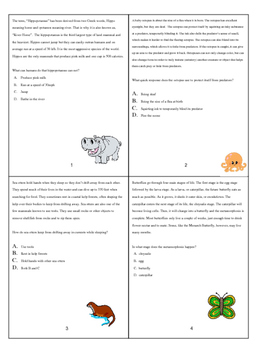 Random and Interesting Reading Comprehension Task Cards
