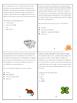 Random and Interesting Reading Comprehension Task Cards