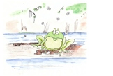 Ranger Kate's Preschool Nature Stories