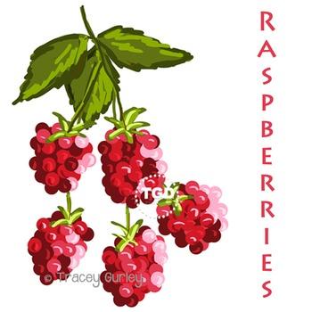 Raspberries Painting - raspberry clip art Printable Tracey Gurley Designs