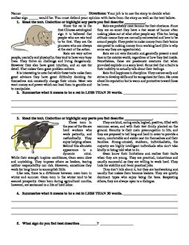 Rat or Ox Characterization of The Body with Chinese zodiac