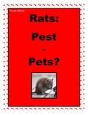 Rats: Pest or Pets?