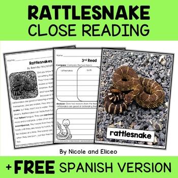 Close Reading Rattlesnake Activities