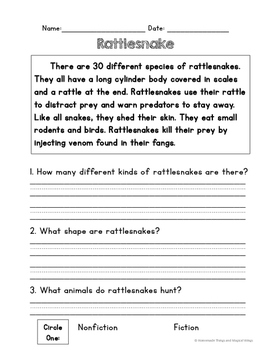 Rattlesnakes: Reading, Writing and Thinking About Animals