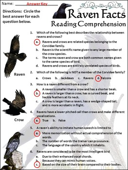 Raven Facts Halloween Science Activity Packet Bundle - Color & B/W