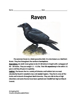 Raven - Bird Informational Artcle Facts Questions Vocabulary