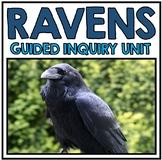 Raven Research Unit
