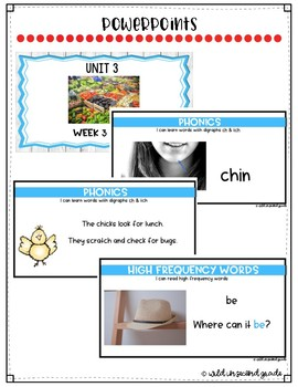 Reach For Reading Flip Charts for First Grade Unit 3 Week 3