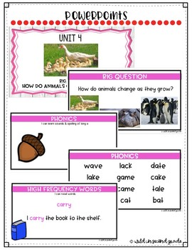 Reach For Reading Flip Charts for First Grade Unit 4 Week 1