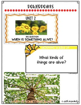Reach For Reading Flip Charts for First Grade Unit 2 Week 1