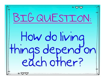 Reach for Reading 2nd Grade Unit 7 Big Question Bulletin Board