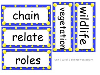 Reach for Reading Grade 2 Unit 7 objectives