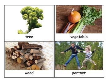 Reach for Reading Kindergarten Unit 4 Vocabulary Cards