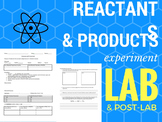 Reactants and Products - Chemical Reactions Lab