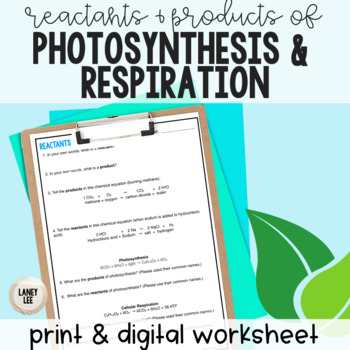 Reactants and Products of Photosynthesis and Respiration