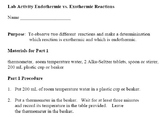 Reaction Rates and Endothermic/Exothermic Lab Activities