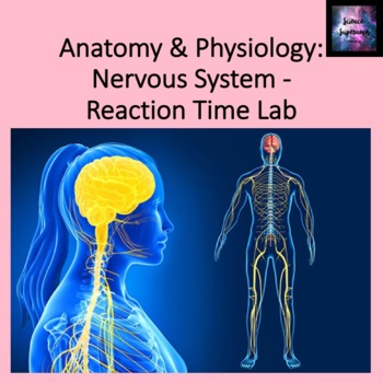 Reaction Time Lab