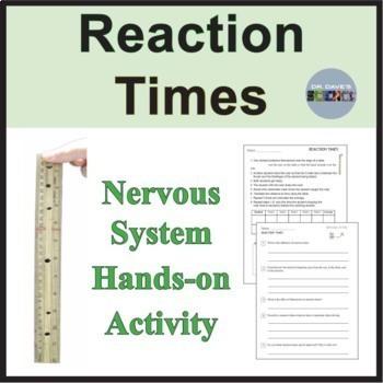 Nervous System: Reaction Times