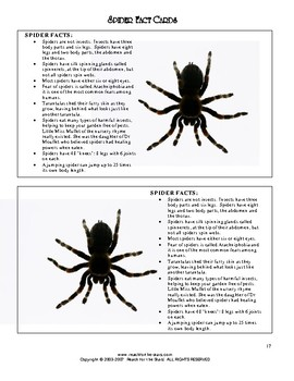 Read-2-Learn - The Very Busy Spider Thematic Unit