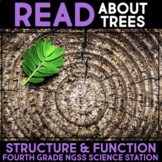 Read All About Trees - Structure & Function