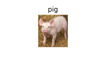 Read Aloud If You Give a Pig a Pancake