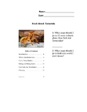 Read Aloud Tarantula Non-Fiction Text Feature Test