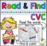 Read & Find - Hidden Picture Puzzles CVC Words