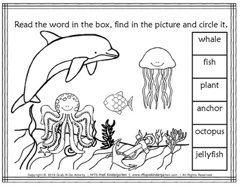 Read Find and Color