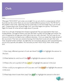 Read, Highlight, Write; Fourth Grade Fiction