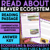 Read About Beaver Homes - Ecosystems and Biodiversity Science Station