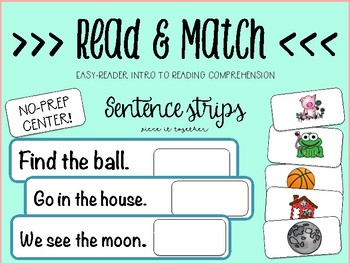 Read & Match - Intro To Reading Comp