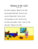 Read Together: Where Is Mr. Cat?