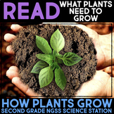 Read What Plants Need to Grow - Second Grade Science Stations