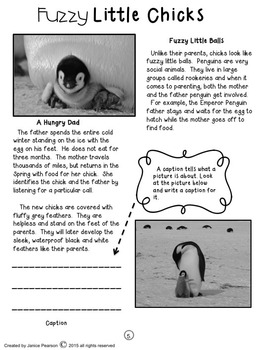 Read and Write About Penguins 2nd grade