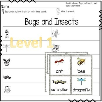 Write the Room - Bugs and Insects