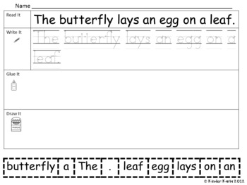 Read it, Trace It, Put the Sentence Together: Butterfly Life Cycle