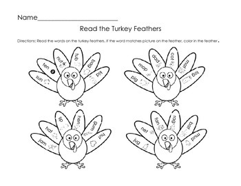 Read the Turkey Feathers--CVC Words