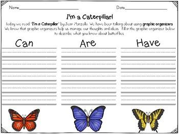 I'm a Caterpillar Reader's Response