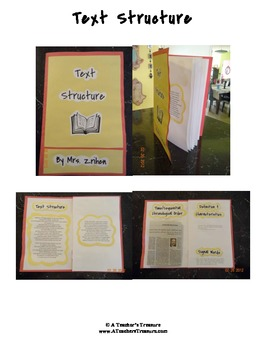 Reader's Workshop Mini Lesson-Patterns/Methods of Organization