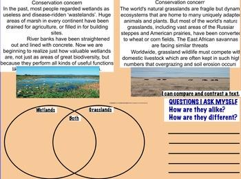 Reading About Habitats Flipchart (3rd Grade)