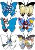 Reading Area Display Butterflies