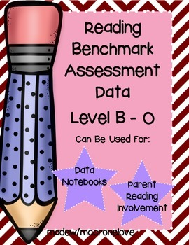 Reading Benchmark Data Form