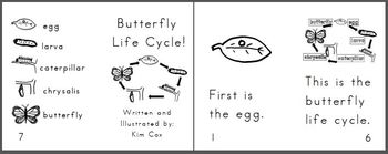Reading Book: Butterfly Life Cycle- 2 versions!