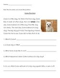 Reading Comprehension #2